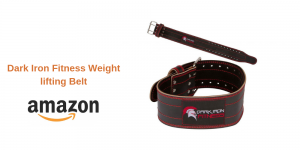 Dark Iron Fitness Weight lifting Belt