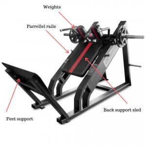 hack squat parts